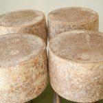 Lincolnshire-poacher-cheese--14