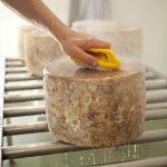 Lincolnshire-poacher-cheese--15